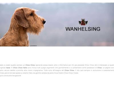 Allevamento Bassotti Wanhelsing