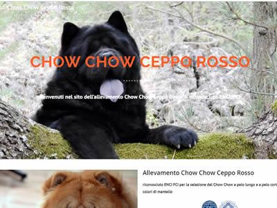 Allevamento Chow Chow Ceppo Rosso
