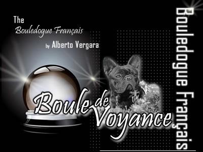 Allevamento Bouledogue Francese Boule de Voyance