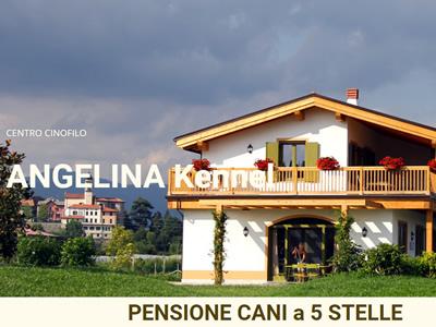Centro Cinofilo Pensione Angelina